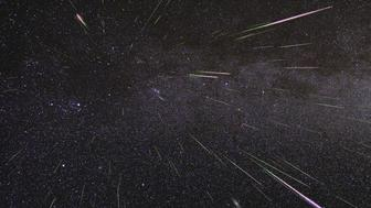 Perseid meteors light up the sky in August 2009 in this time-lapse image.