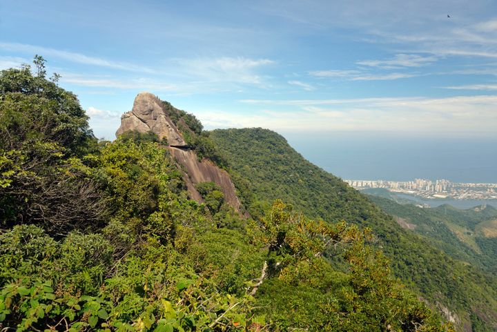The Bico do Papagaio peak in Tijuca Forest.