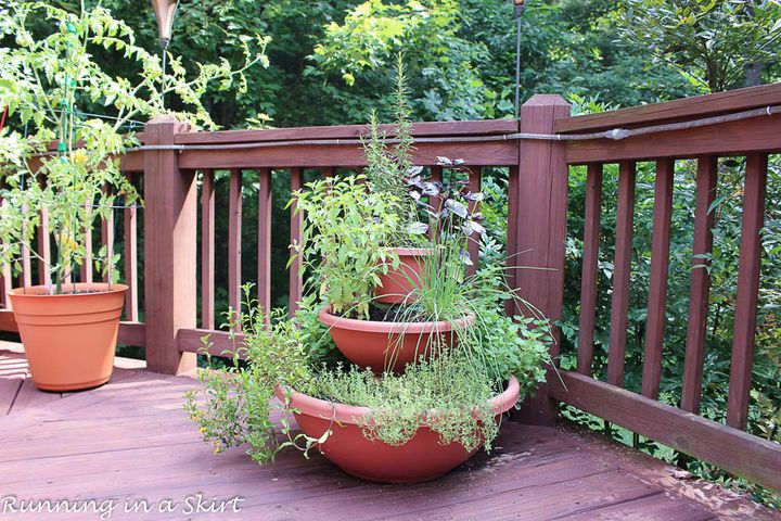 The perfect herb garden for small spaces.
