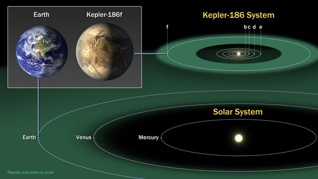 The Kepler-186 system compared with the inner planets of our own solar system. Kepler-186f, an Earth-sized...