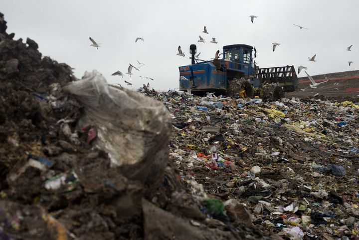 Food waste makes up a huge portion of the garbage in U.S. landfills.