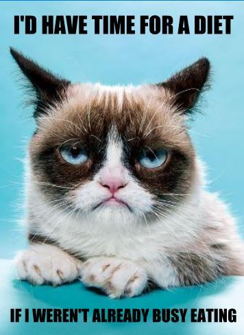 "Fun fact: the word ""diet"" starts with ""die"". Coincidence? Grumpy cat doesn't think so."