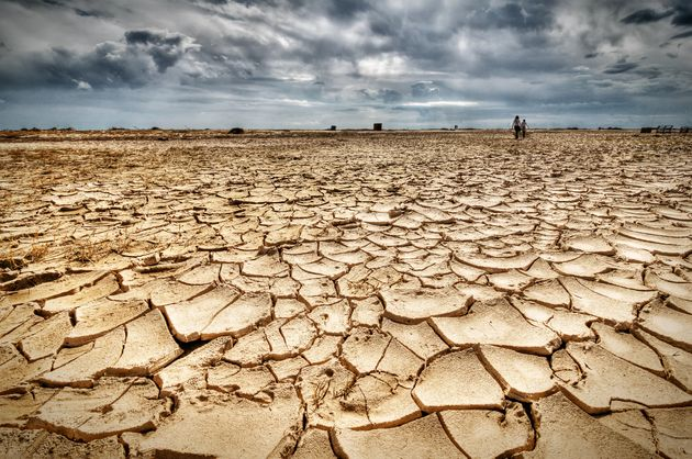 Global warming, deforestation, soil erosion and depletion of water resources are just some of the impacts...