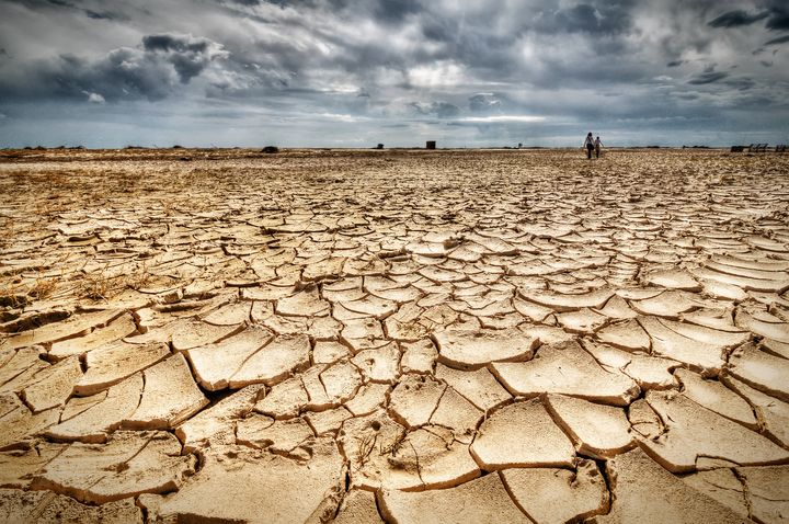 """Global warming, deforestation, soil erosion and depletion of water resources are just some of the impacts of accumulating """"ec"""