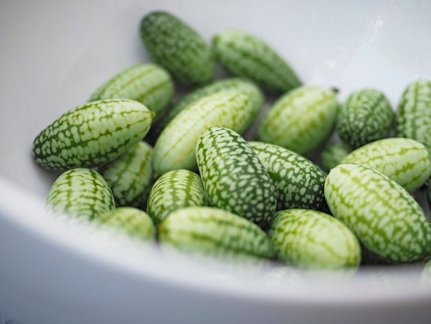 The Cucamelon Is The Cutest Summer Food You Should Be ...
