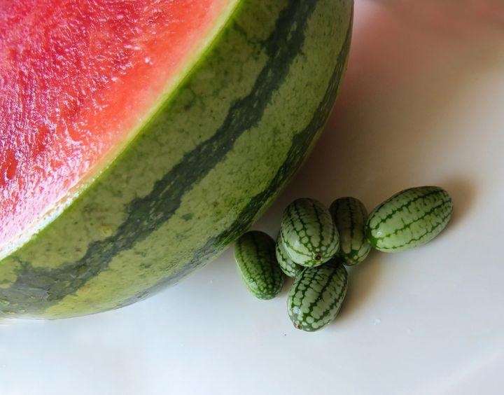 Cucumber Melon Baby Food