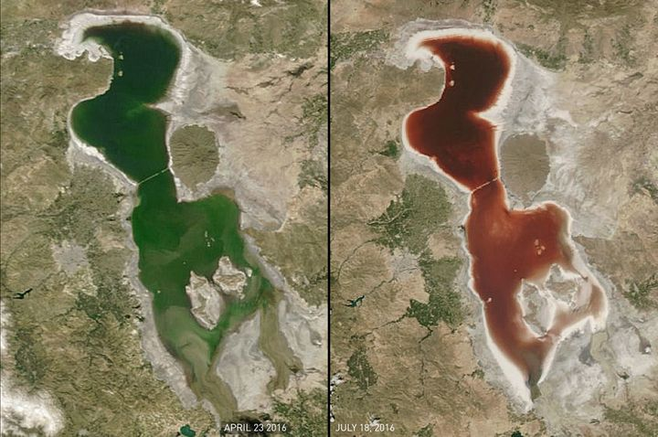 Bloody Transformation: The waters of Lake Urmia changed from green on April 23 to red on July 18, as seen by a NASA satellite