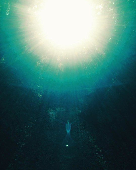 Angelic Light Hologram in the Woods