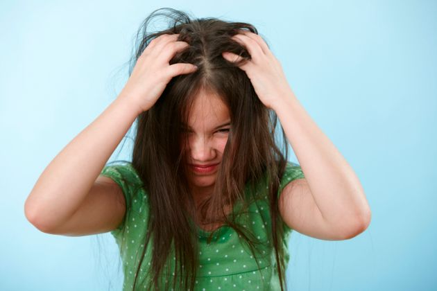 Head Lice Everything Parents Need To Know About Nits Huffpost Uk