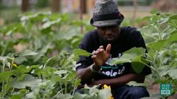 Former Gang Member Heals His Neighborhood Through Organic