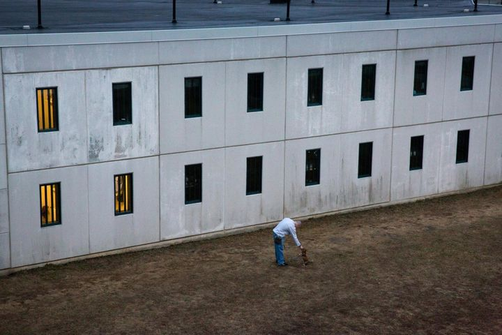 Every few weeks, adult dogs and puppies come into Maine State Prison from shelters. The men share their cells and train them