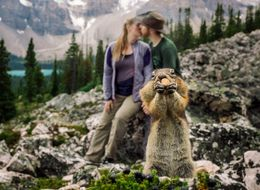 This Squirrel Photobombed A Couple's Engagement Pics And It Was Nuts