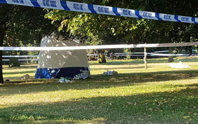 Witnesses described seeing a body lying face down between two trees near a public