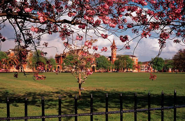 Blossom on trees framing Dulwich college,