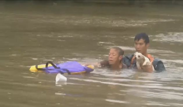 A woman and her dog are seen moments after they were pulled from a sinking car by this man in Baton