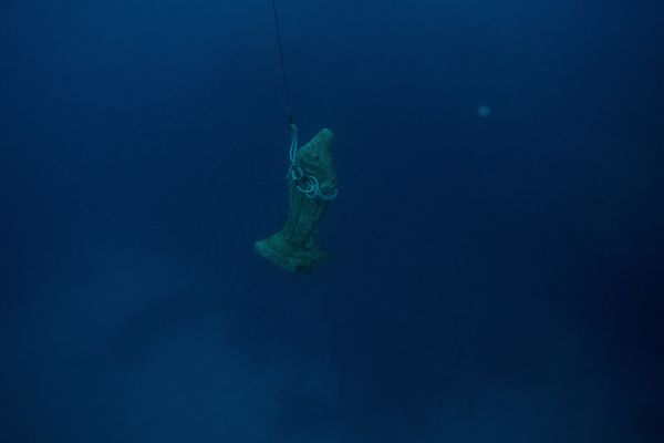 An image of the Virgin of Palm is heldby a string as divers take it to the surface during the yearly Virgin of Palm mar