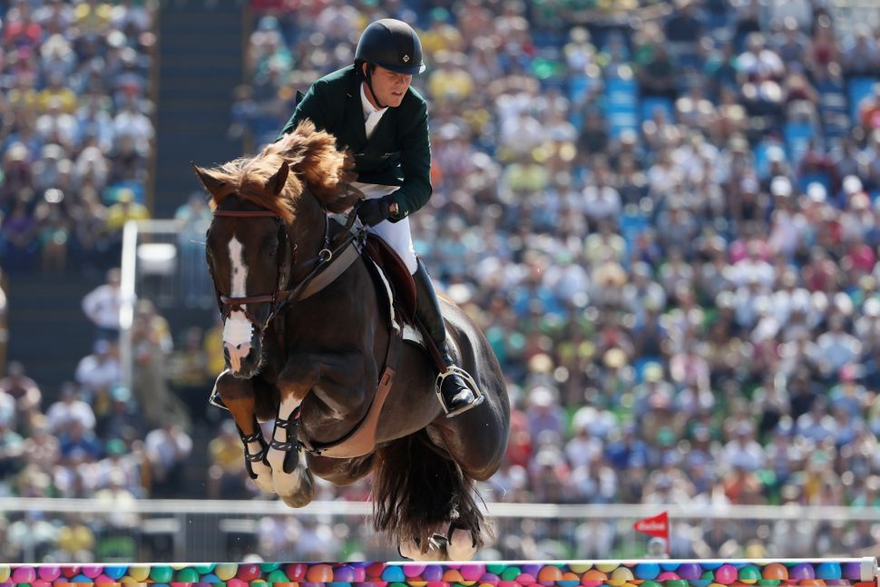 Flying Horses Are Real, And These Photos Prove It | HuffPost
