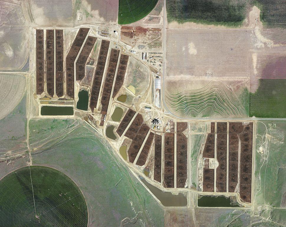 Centerfire Feedyard, Ulysses, Kansas