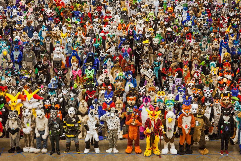 Anthrocon, Pittsburgh, Pennsylvania  2014