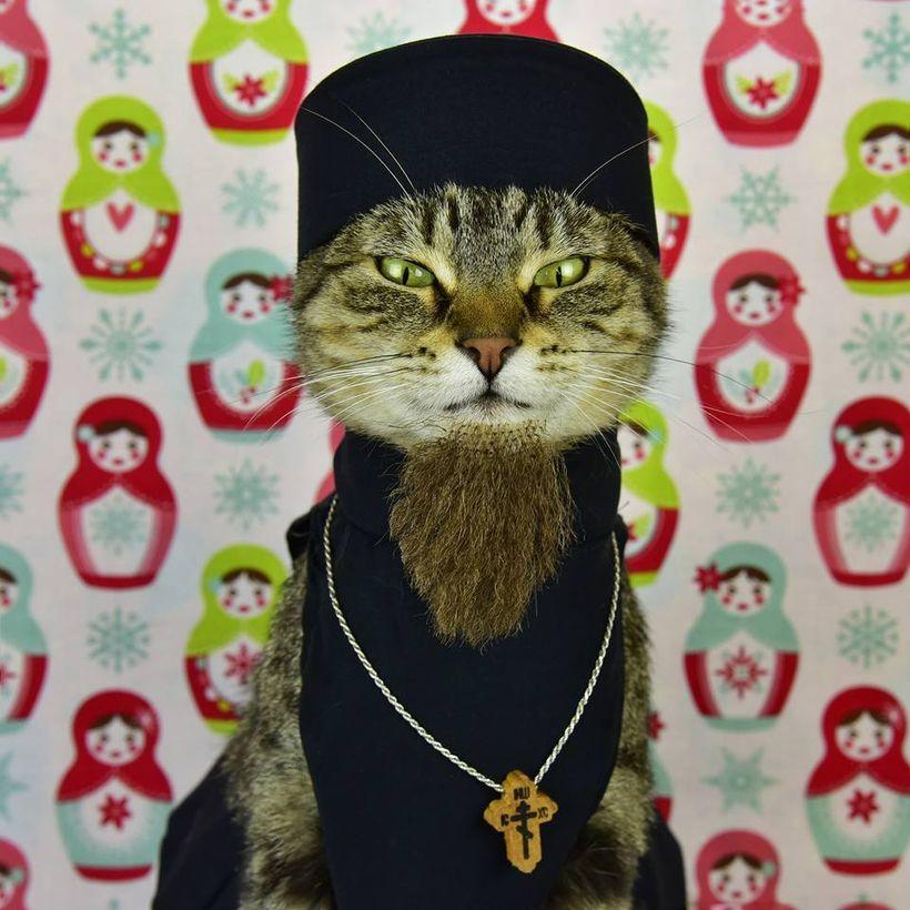 """Cat-sputin"""