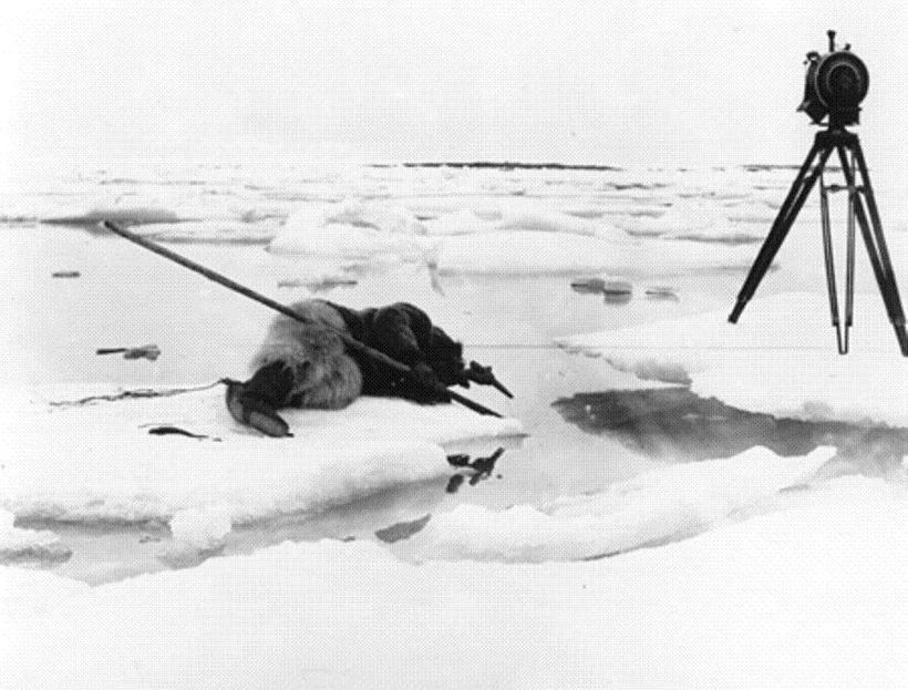 Filming a seal killing for <strong><i>Nanook of the North</i></strong>