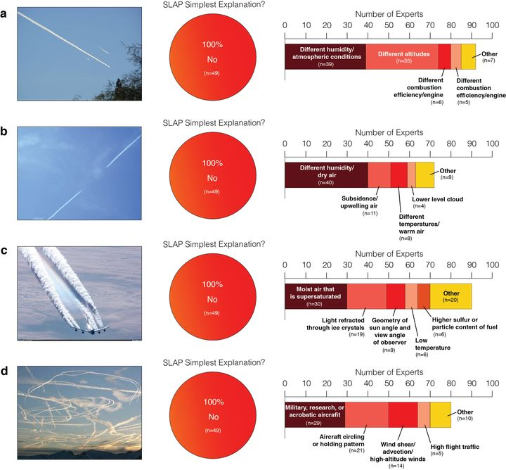 This is what scientists had to say when they were asked to explain different photos of contrails.