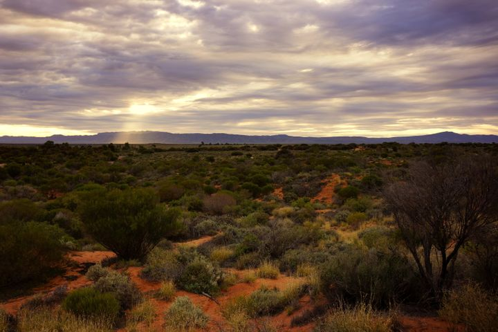 Flinders Ranges only get around 10 inches of rain a year and the region is prone to earthquakes.