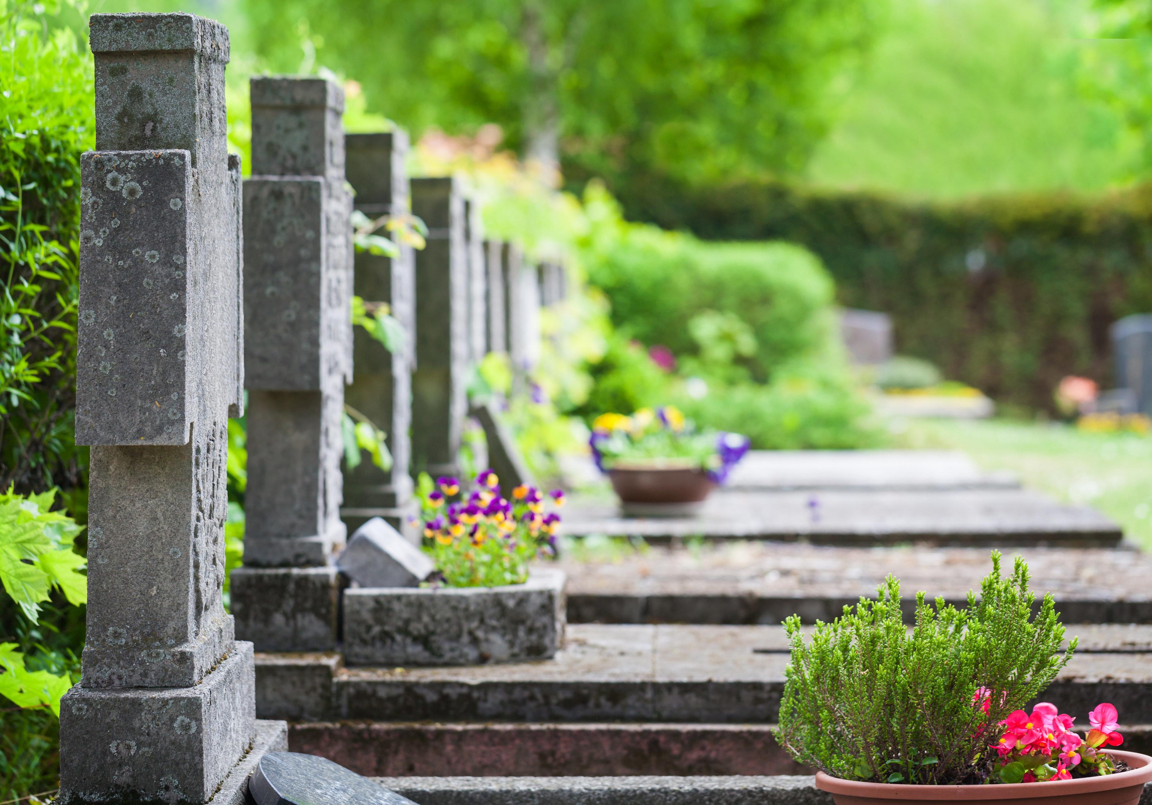 Friedhof, Gräber im Frühling