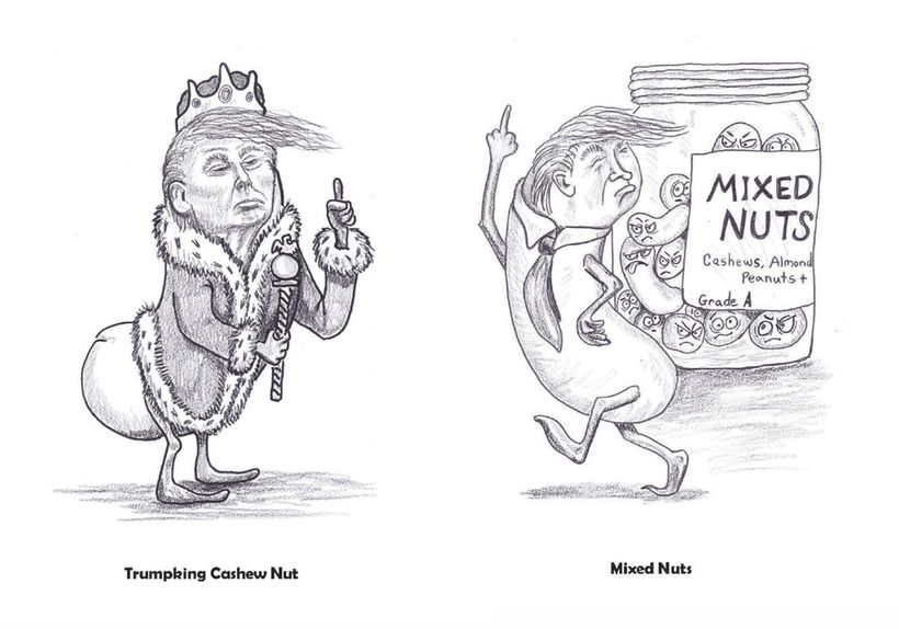 From a Nut Dressed as an Emperor to a Mixed Up Nut<br>from the book:&nbsp;<i>Trump Is a Nut!</i>