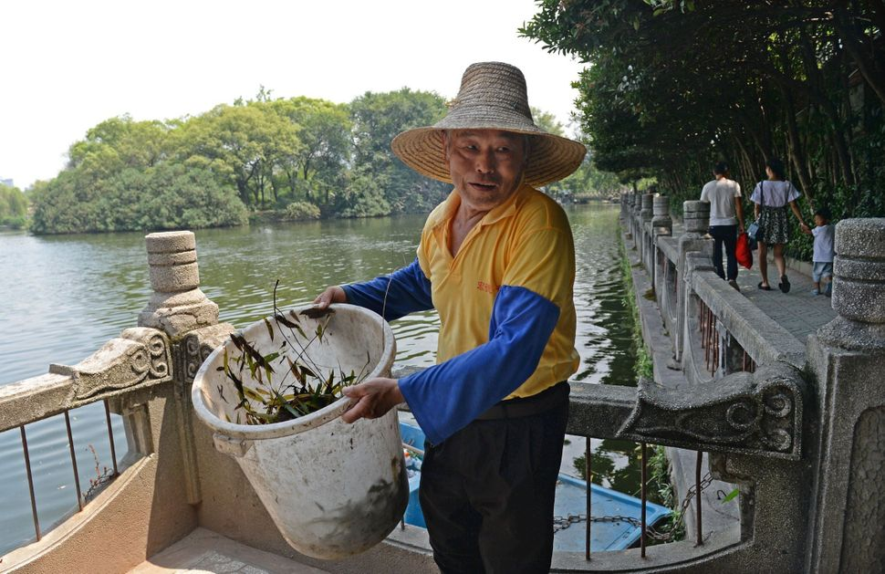 Xiong Quande carries newly-collected rubbish onto the banks of the Donghu Lake of Bayi Park in Nanchang, China. The 66-year-o