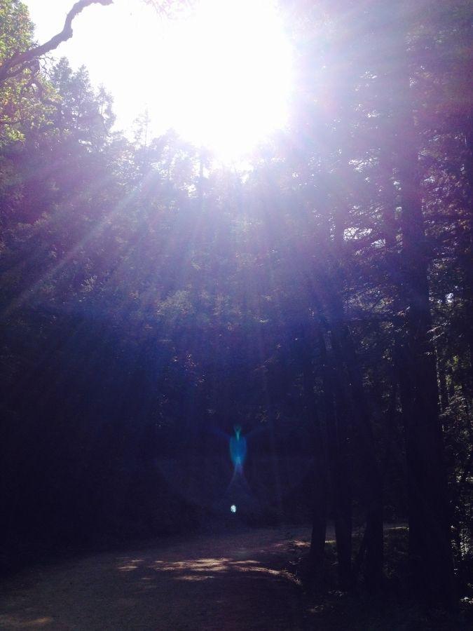 "Original ""Blue Angel"" photograph - May 16, 2015  (#NoFilter)"