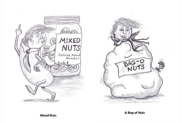 Trump Is Nuts!