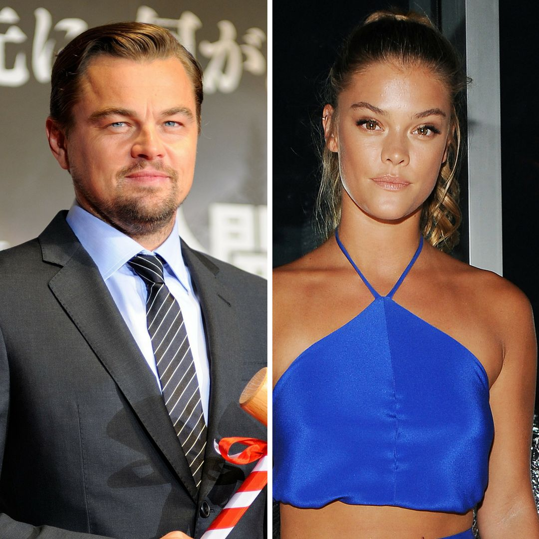 Leonardo DiCaprio and his girlfriend, Nina Agdal, were in a minor car accident