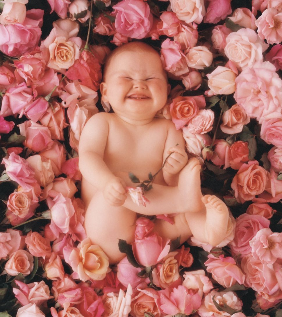 Anne Geddes, The Photographer Who Put Babies In Flower Pots, Is ...