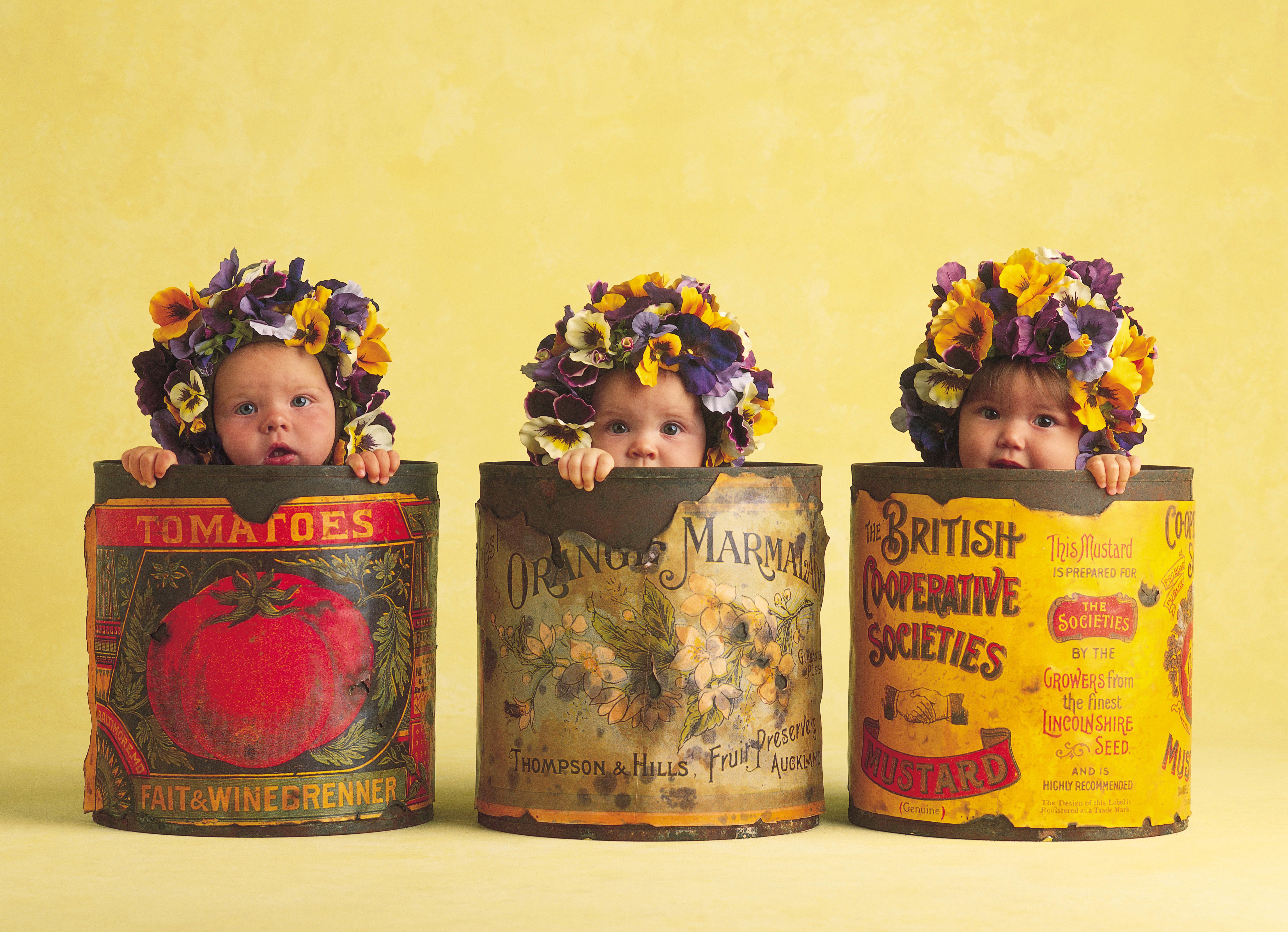 191 & Anne Geddes The Photographer Who Put Babies In Flower Pots Is ...