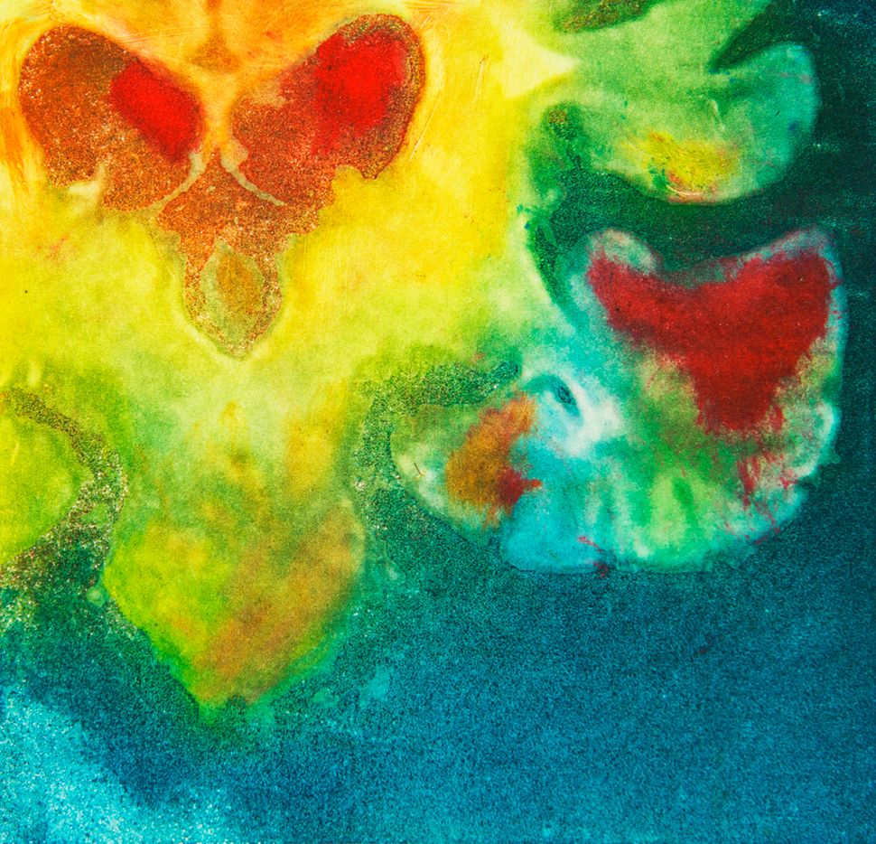 """Valentine,"" a coronal view of the brain stem, cerebellum, and lateral ventricles."
