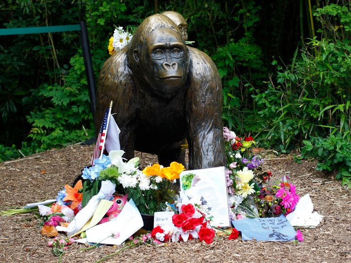 Flowers lie around a statue at the Cincinnati Zoo days after officials had to shoot Harambe, a 17-year-ol