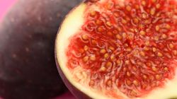 You'll Never Be Able To Unlearn What Figs