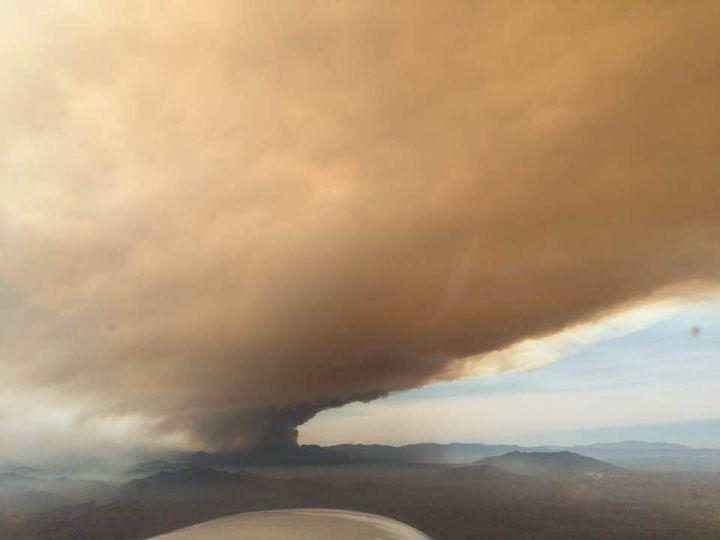 Cedar Fire as seen from the air attack plane.