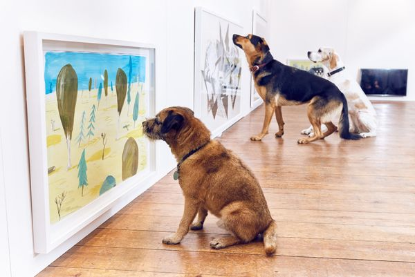 A border terrier, German Shepherd-Rottweiler and English pointer look at paintings in the exhibition.