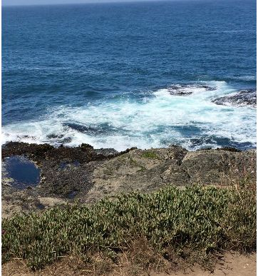 Mendocino is the quintessential vacation down ... Watch your footing!