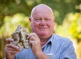 Whale Vomit Chunk May Increase British Family's Gross Income