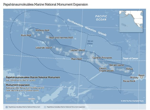 Obama To Quadruple Hawaii Monument, Creating World's Largest Protected Marine