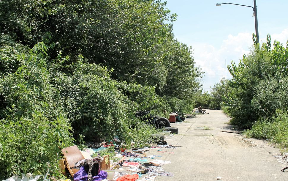 Unkempt streets that are not completely choked by vegetation have become dumping grounds.