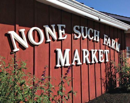 None Such Farm Market, Buckingham, PA