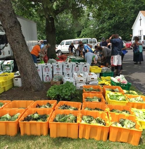 Mass distribution of produce to hunger relief sites in Bucks County, PA