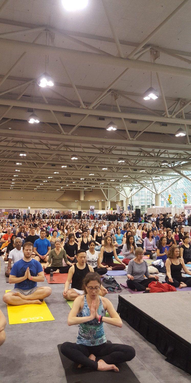 Toronto yoga Conference 2016