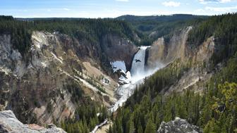 A view of the Lower Falls at the Grand Canyon of the Yellowstone National Park on May 11, 2016. Yellowstone, the first National Park in the US and widely held to be the first national park in the world, is known for its wildlife and its many geothermal features.  / AFP / MLADEN ANTONOV        (Photo credit should read MLADEN ANTONOV/AFP/Getty Images)