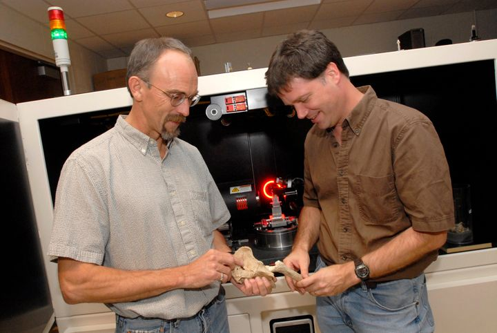 Professors John Kappelman and Richard Ketcham examine casts of Lucy while scanning the original fossil (background).