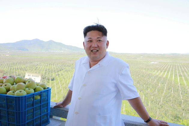 North Korean leader Kim Jong Un visits the Taedonggang Combined Fruit Farm in this undated photo released...